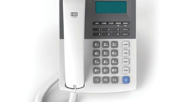 IP336-2.jpg